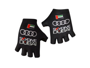 ale_skydiveduba_2016_gloves